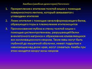 Амебная дизентерия