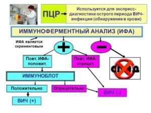 Иммуноферментное исследование крови