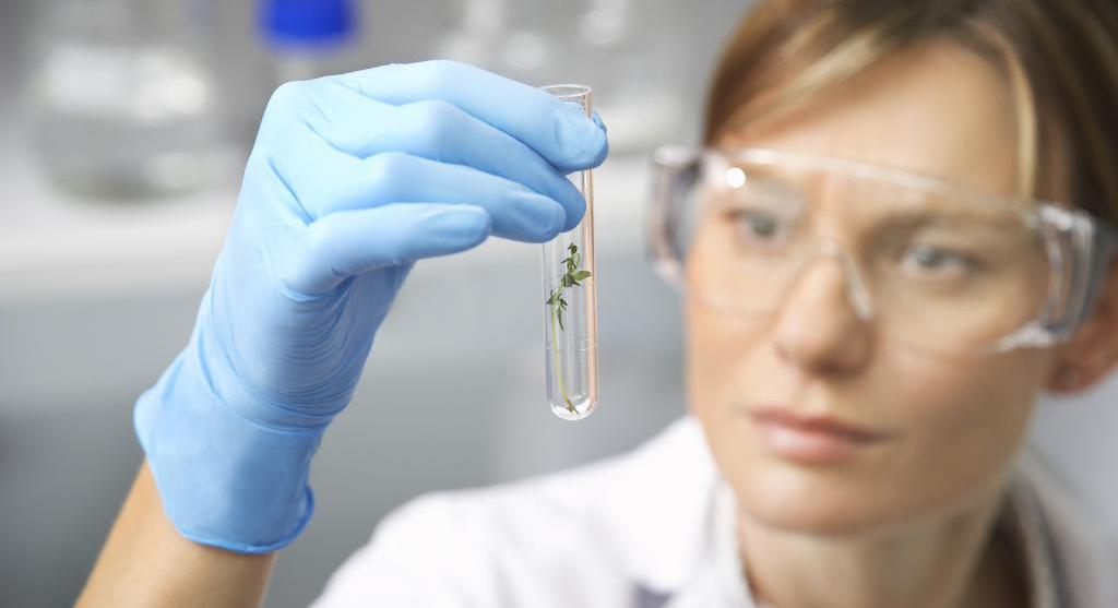 Анализ биоматериала