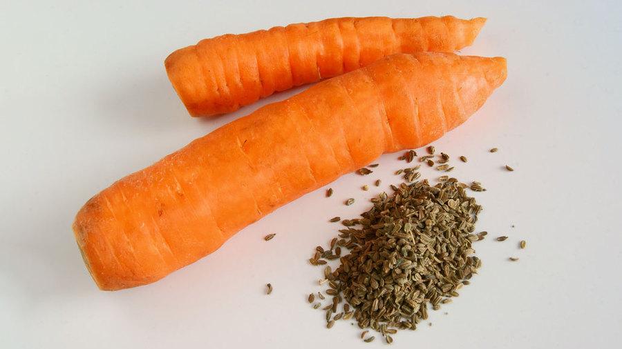 Измельченные морковные семена